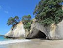 SS Cathedral Cove 130x87